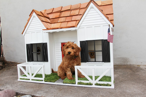 The Ruffterhouse Dog House