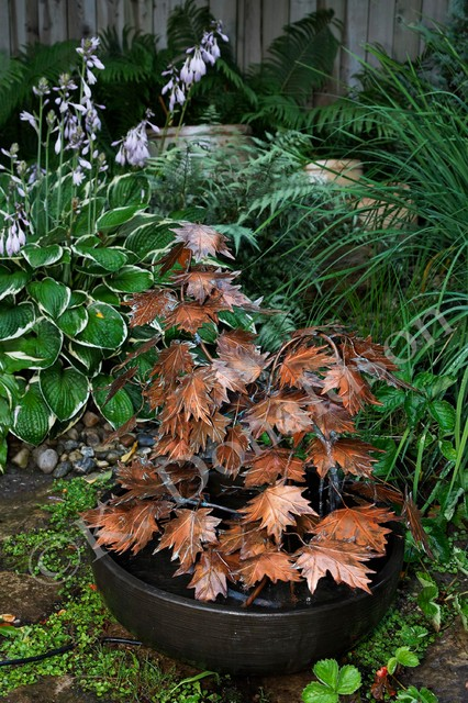 Copper Maple Leaf Fountain