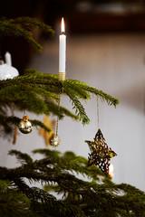 Новогодний декор 2021: Что в моде на игрушки, украшения и елки