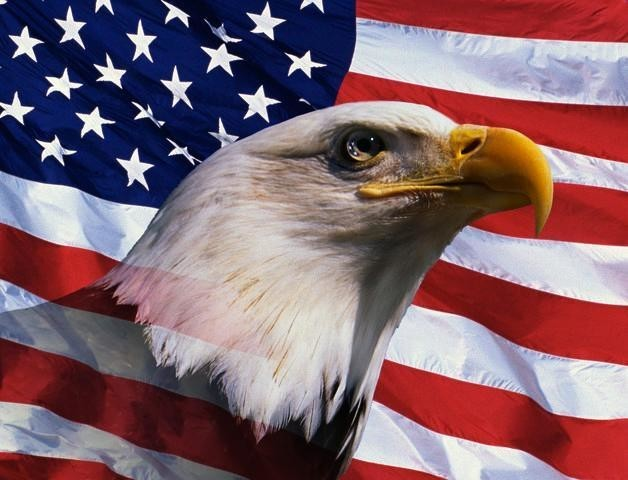 Bald Eagle And American Flag Peel And Stick Removable Graphic