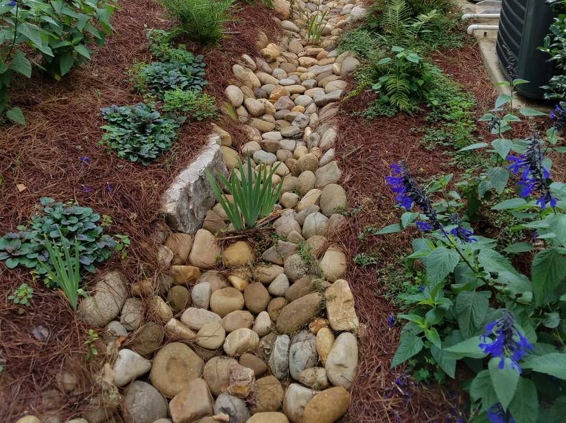 Wilberger Dry Creek Bed