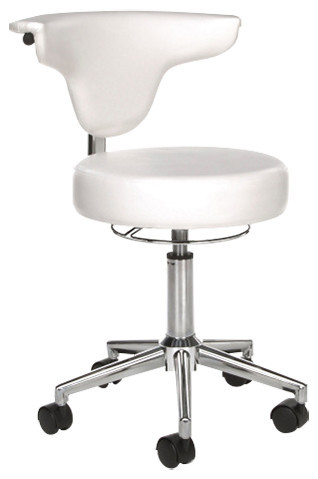 White Vinyl Anti Microbial Anatomy Chair, White.