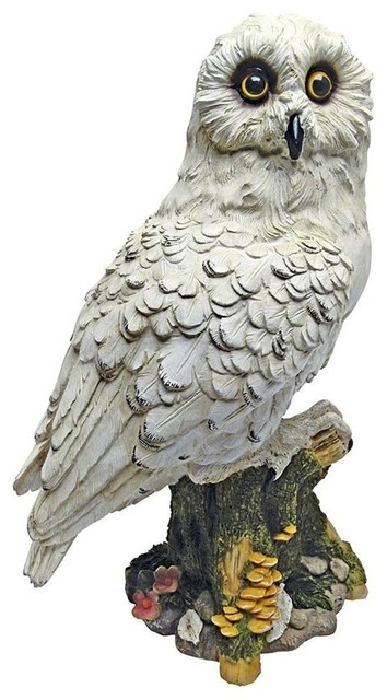 Design Toscano Mystical White Owl Statue Garden Statues And Yard