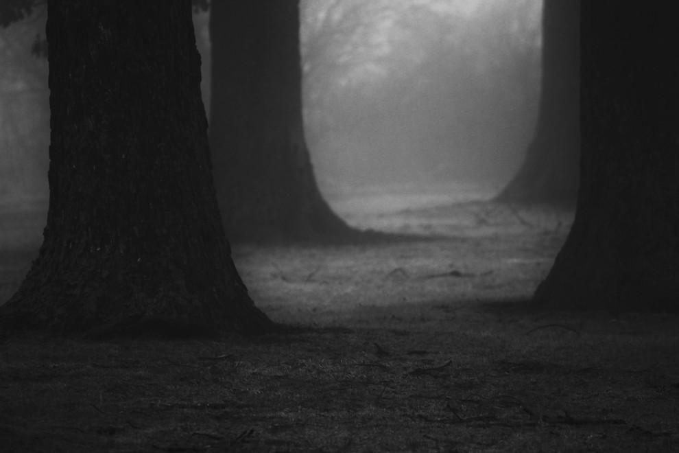 ...in fog.