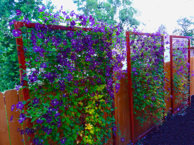 Custom Metal Trellis With Rusted Patina Becomes A Living