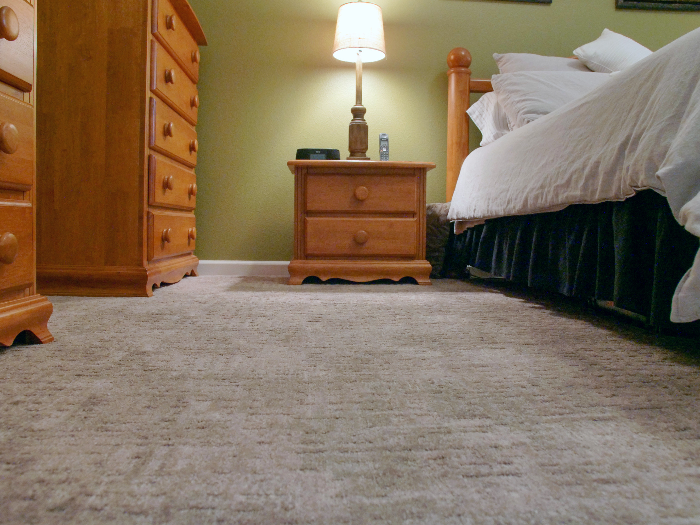 Transitional Master Bedroom with Carpet