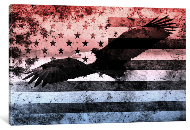 "USA ""Melting Film"" Flag (Bald Eagle)"" by iCanvas, 40x26x0.75"""