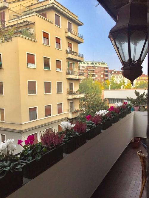 Creare privacy in balcone - Creare un giardino sul balcone ...