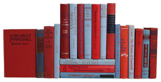 20 Piece Midcentury Book Set Red And Blue Contemporary Books By Booth Williams
