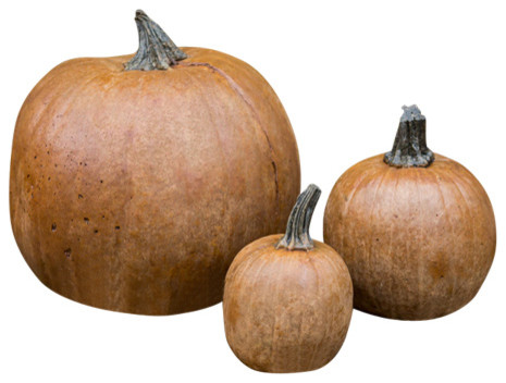 Lifetime 3-Piece Stone Pumpkins Set, Terracotta.