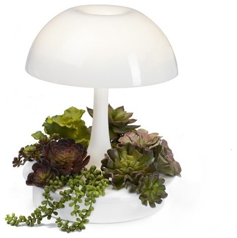 Sage Vertical Garden Systems   Ambienta Modern Lamp And Indoor Planter    Ambienta Is A Multi