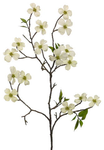 Dogwood tree branches 64665 trendnet dogwood tree branches mightylinksfo