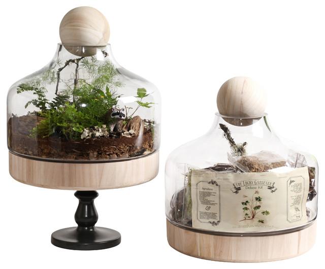 Lucky Gardener Deluxe Terrarium Kit - Modern - Terrariums ...