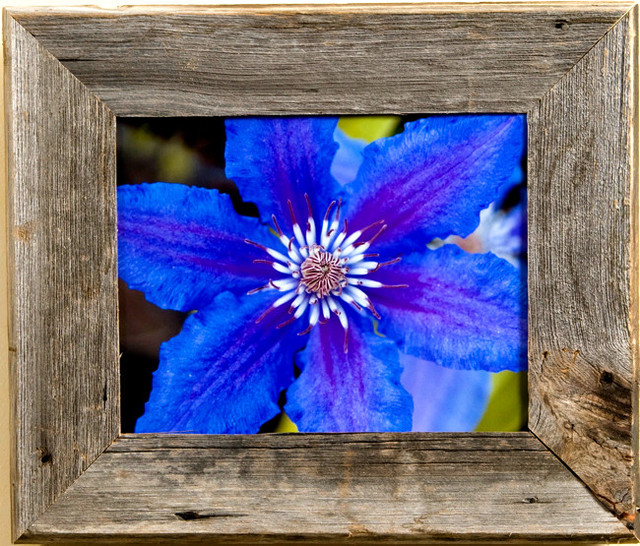 barn wood picture frame medium width 25 aspen series 10x10 rustic picture