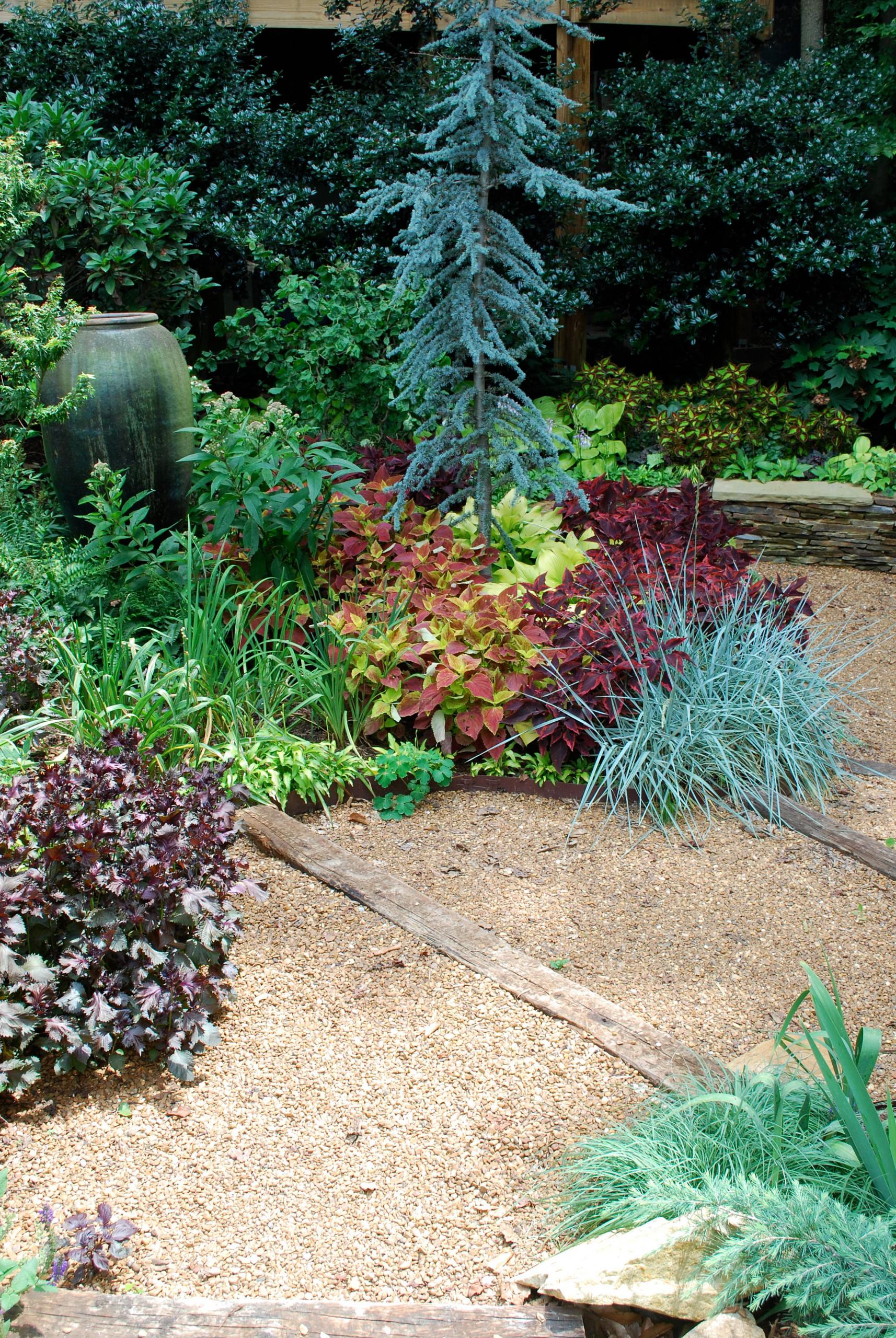 Lawnless front garden.