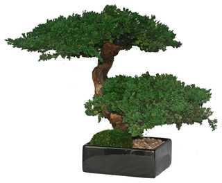 manzo double bonsai tree - asian - artificial flowers plants and