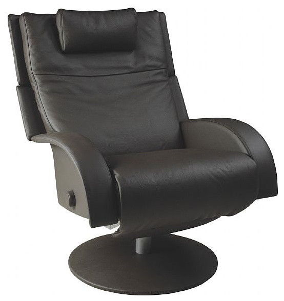 Image Gallery Swivel Recliner