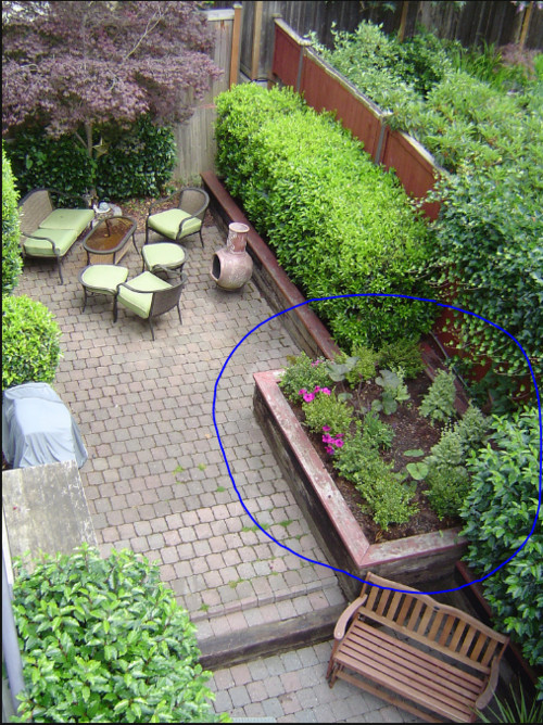Need help planning out a small garden plus fountain for Home garden design houzz
