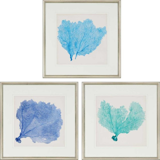 Paragon Naturals Coastal Sea Fan II Pack of 3 Wall Art - Beach Style ...