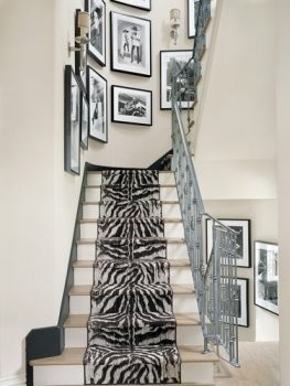 Abbott Houston zebra rug