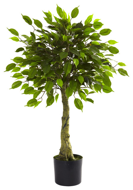 Artificial Ficus Tree Traditional Plants