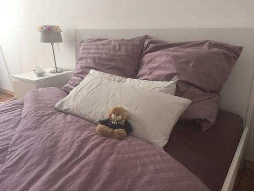 Pareti Viola E Verde : Pareti viola e lilla. finest camera con letto da una piazza e mezzo