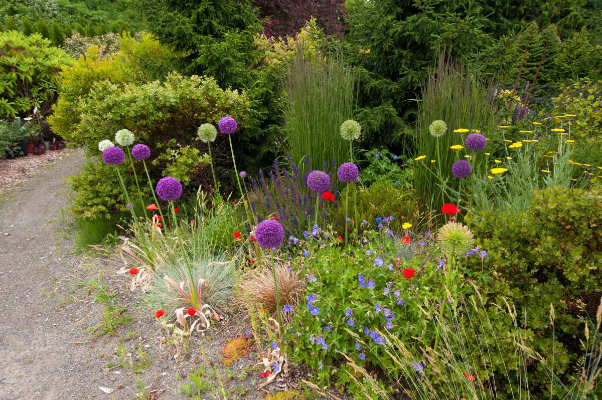 - Barbara Lycett Landscape Design - Seattle, WA, US 98177