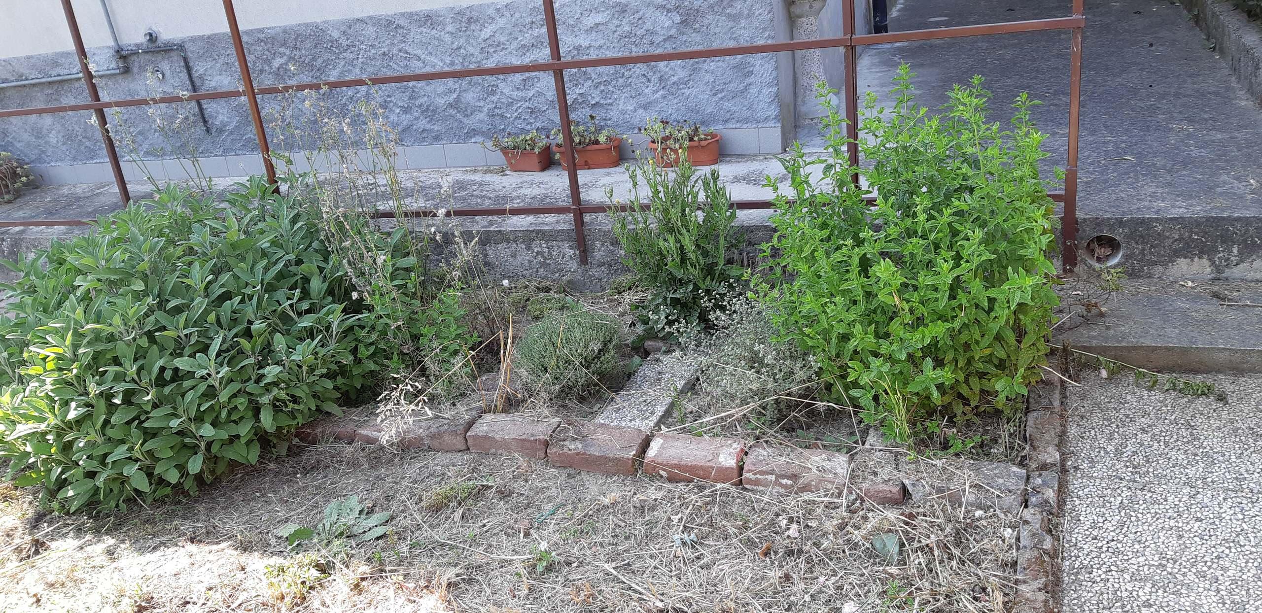 Giardino privato G. D.R.