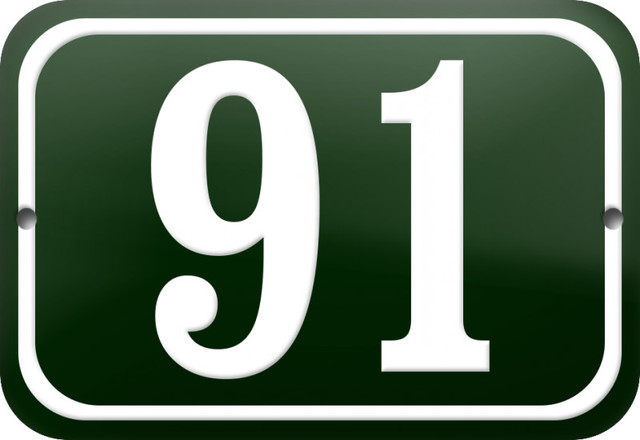 """Number """"91"""" Enamelled Plaque, Green, With Border"""