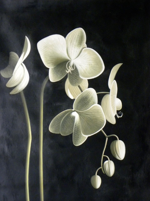 black white and sage orchid oil painting