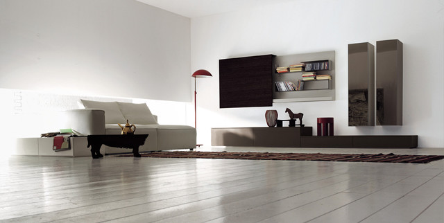 C Example Of A Minimalist Living Room Design In San Francisco