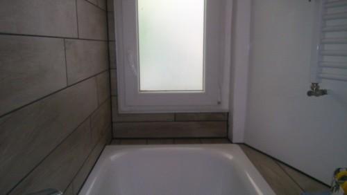 Piante in un bagno poco luminoso, quali?