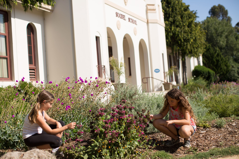 Soquel Elementary Turf Removal Project