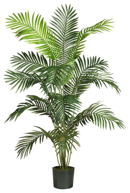Jekyll Silk Palm Tree. -1