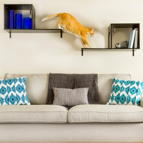 Sophia Wall Mounted Cat Tree · Contemporary Cat Furniture