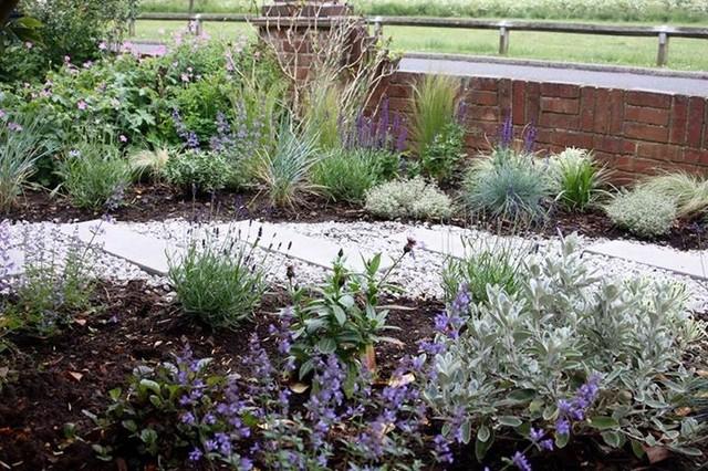 Small Front Garden 52WW
