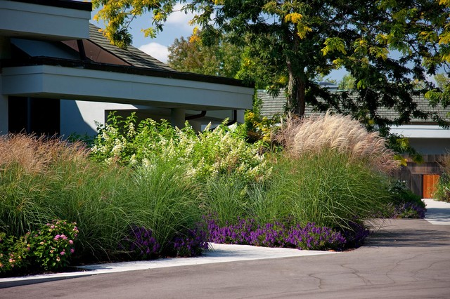 Residential House Landscaping : Residential home contemporary landscape toronto by