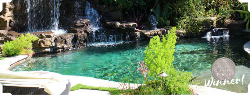 Studio City - Naturalistic rockwork pool with waterfalls and remodeled backyard