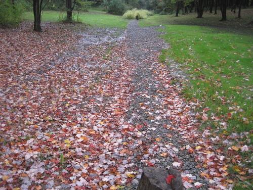 Subsoil Drainage Fabric : Soil for good drainage