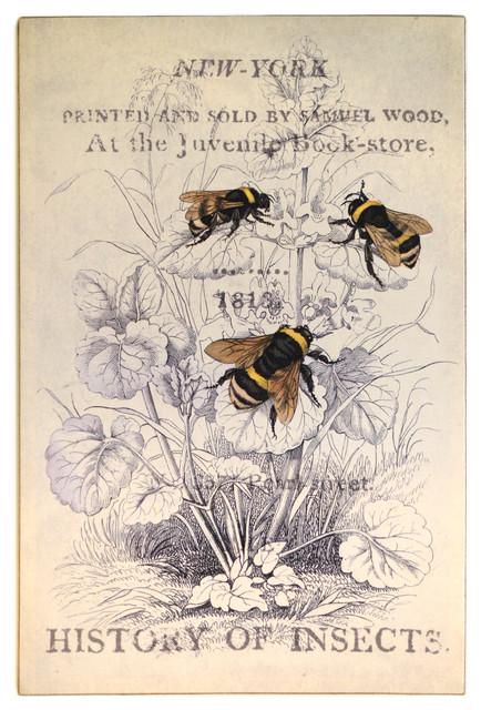 3 Bees Print