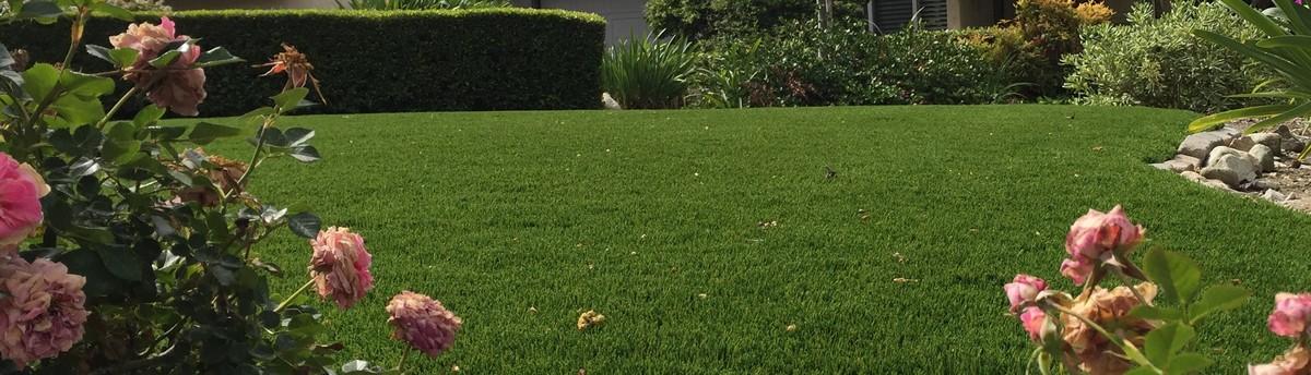 Purchase Green Artificial Grass - San Dimas, CA, US 91773