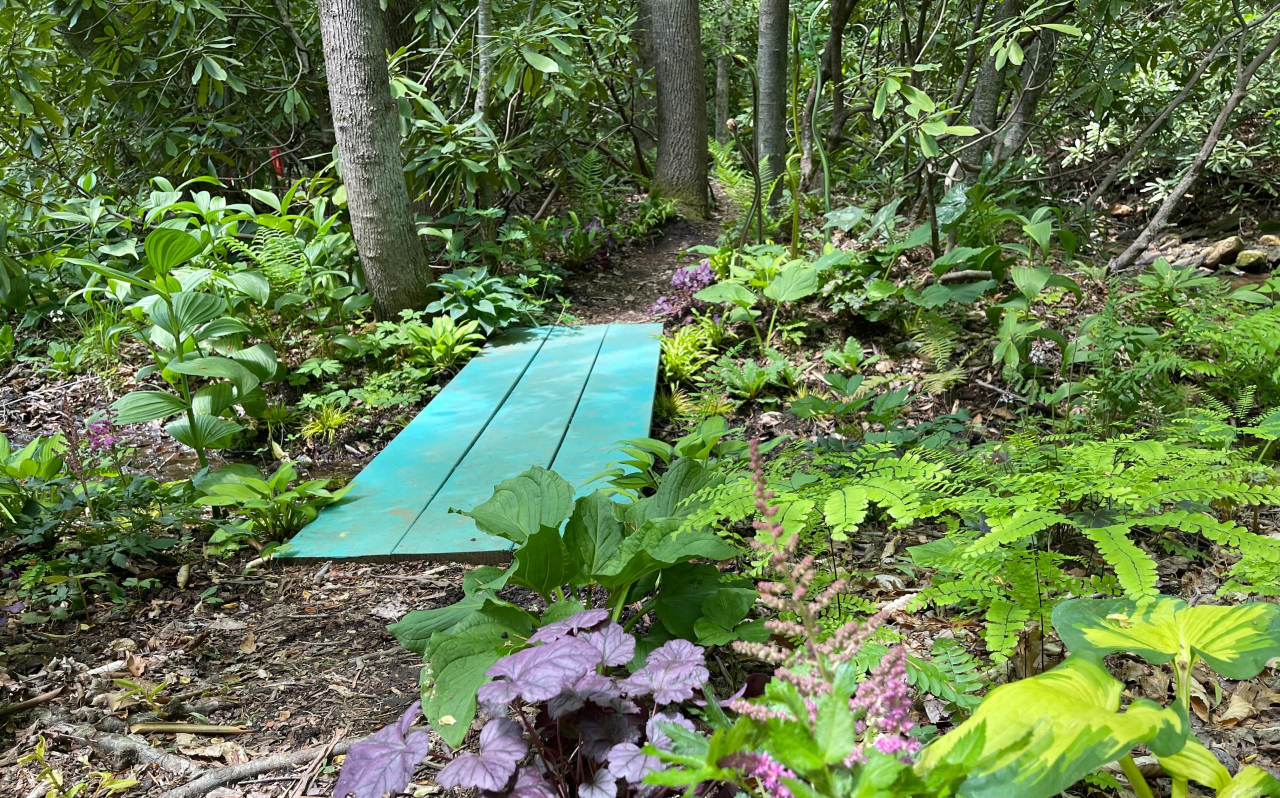Foot Bridge Garden