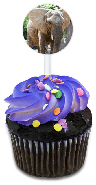 Elephant In The Room Cupcake Toppers Picks Set.