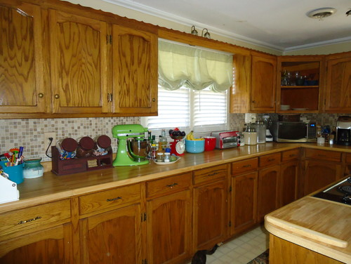 Should i paint my custom solid wood kitchen cabinets for Inexpensive wood kitchen cabinets