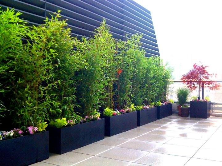 Trendy rooftop deck container garden photo in New York
