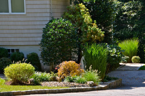 Side Landscaping | Pleasantville NY