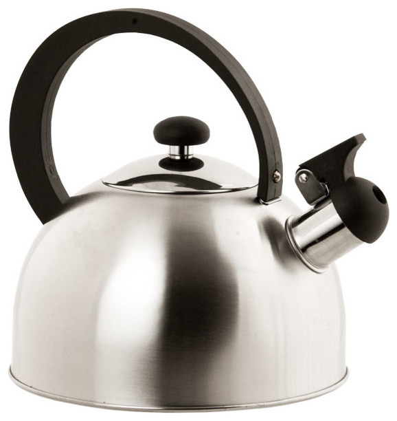 Home Basics Tea Kettle, Stainless Steel