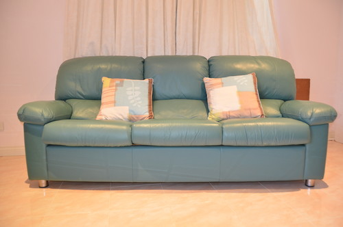 Need help what to do with teal green leather sofa for Teal leather couch