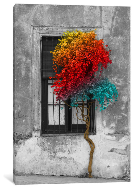 """tree In Front Of Window Rainbow Pop Color Pop"" By Panoramic Images, 40x26x0.75""."