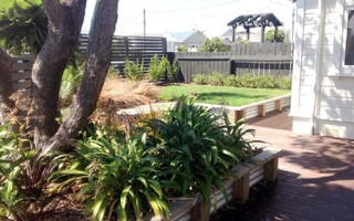Gallery transitional landscape wellington by jamie for Landscaping rocks wellington